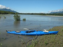 Kayaking the back waters of the Fraser River